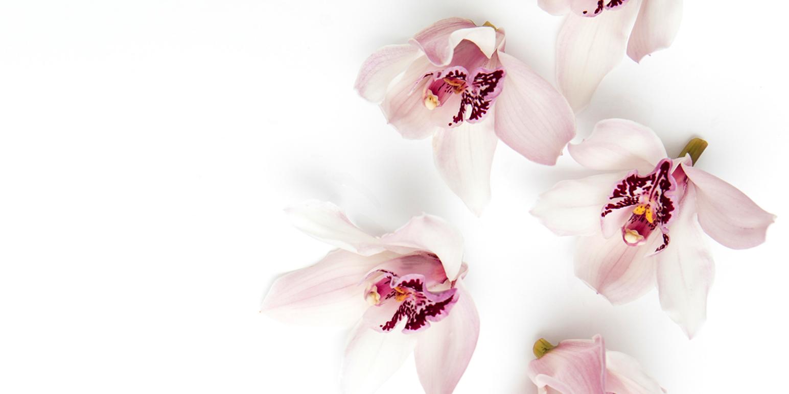 PLC kihívás, avagy egy orchidea életben tartása ipari automatizálással